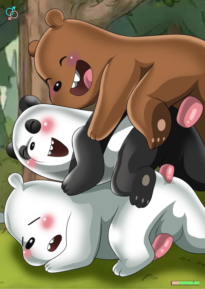 we bear bears Avatar the last airbender yaoi