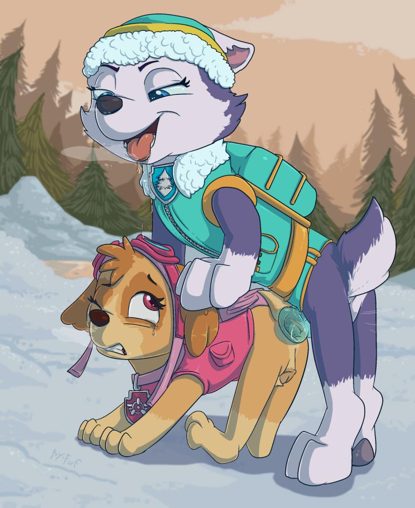patrol rocky paw x tundra Fela pure mitarashi-san chi no jijou the animation
